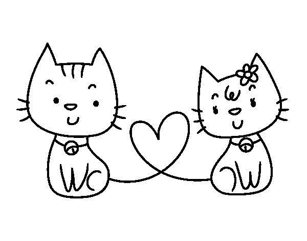 imagenes de gatos para colorear www.diseñoscreativos.com portada 1